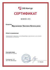 Murzanaeva EV - Podkluchenie k KE